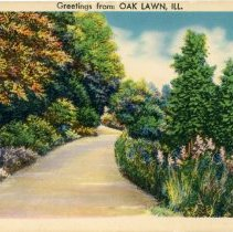 Image of Greetings from Oak Lawn Postcard - This item is a postcard from Oak Lawn featuring a road winding through a wooded area.  There is no writing or information on the back.