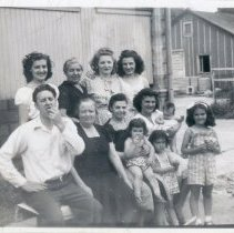 Image of Vallera Family - This is a photograph of the Vallera Family posing at the family's cement block business near 95th Street and Kilpatrick Avenue.  From left to right are (back row) Evelyn, Maria, Lina, and Jeanette, (second row) Bill, Bambina, Claurice, Carmella, and Mary Ellen, (first row) Jean, Cheryn, and Deanna.