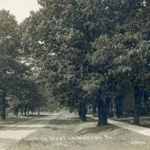 Image of Wabash Avenue Postcard - This item is a postcard of Wabash Avenue looking west around 1910.  There are several homes visible on either side of the street, and the back contains a small amount of written information.
