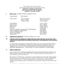 Image of Village of Oak Lawn Board of Trustees Minutes, 2010 - Minutes of the Oak Lawn Board of Trustees for the year 2010.
