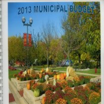 Image of Adopted Village Budget, 2013 - This item is the Village of Oak Lawn 2013 municipal budget. The document contains charts, graphs, and statistics related to village finances.