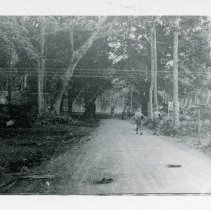 Image of World War II Photograph - This is a photograph taken in the Pacific Theater during the Second World War. It features a dirt road and trees, and may have been snapped in the Philippine Islands.