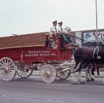 Image of 1983 Oak Lawn Fest Parade - This item is a slide of the 1983 Oak Lawn Fest Parade.  It features a team of horses pulling a Budweiser Wagon down 95th Street.  The Video King is visible in the background.