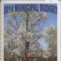 Image of Adopted Village Budget, 2014 - This item is the Village of Oak Lawn 2014 municipal budget. The document contains charts, graphs, and statistics related to village finances.