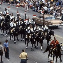 Image of 1982 Oak Lawn Centennial Parade - This item is a slide of the 1982 Oak Lawn Centennial Parade. This is a view of the Medinah Shriners Black Horse Troop moving down 95th Street. Moving in the opposite direction are antique automobiles including a 1958 Chevy Impala. Crowds of spectators can be seen on lining both sides of 95th Street to view the parade as well as a clown, photographers, and some uniformed crowd control officers. This event celebrated the one hundredth anniversary of Oak Lawn's official survey and the completion of the railroad.