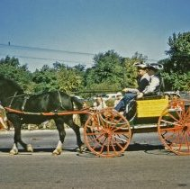 Image of Oak Lawn Round-Up Days Parade - This is a photograph of the Oak Lawn Round-Up Days Parade. The parades is moving westbound on 95th Street just past 50th Avenue. Featured is a horse and buggy sponsored by the Oak Lawn Feed Store which was located at 5323 West 95th Street.