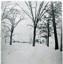 Image of 51st Avenue, 1915 - This is a photograph of 51st Avenue in the winter of 1915. It was taken from 94th Street looking north and shows the Krueger home in the distance.