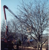 Image of Village Christmas Lights - This is a photograph featuring a Village crew using a cherry picker to put up Christmas lights on trees near the Public Safety Center located at 9446 S. Raymond Avenue. In the background, between the trees, the O'Brien home located at 9402 South 53rd Court is partially visible. The home has been designated as a historical landmark. It was built in 1893. Frank J. O'Brien, an early Police Magistrate and Justice of the Peace, lived here with his family for a time.