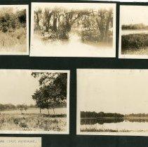 Image of 1977.110.0005 - Print, Photographic