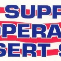 Image of Desert Storm Bumper Sticker (F