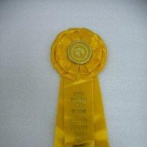 Image of 2006.001.0009 - Ribbon, Prize