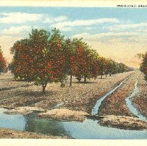 Image of 2011.042.0021 - Postcard