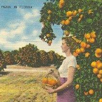Image of 2011.042.0022 - Postcard
