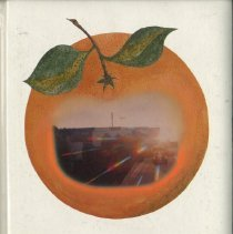 Image of R 371.8 West Orange 1981 c2 - Yearbook