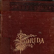 Image of RB Lanier 1876 - Book