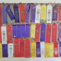 Image of 1992.052.0009 - Ribbon, Prize