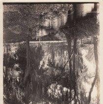 Image of 1969.001.0005 - Print, Photographic