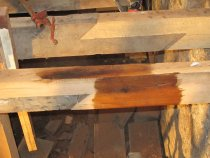 """Image of """"Image #5, Joist extensions treated with a borate insect preservative."""""""