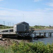 Image of Photograph - Fred Bridge