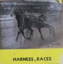 Image of Poster - Poster: Harness Races