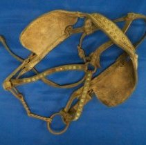 Image of Bridle - Bridle, twisted wire bit & blinders