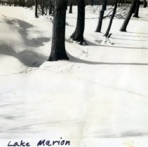 Image of Print, Photographic - Gaines property at Lake Marion