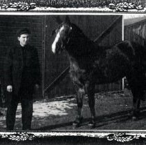 Image of Print, Photographic - Man & horse