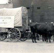 """Image of """"McLeod Co. Minn or Busted"""" covered wagon"""
