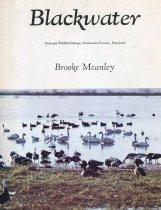 Image of Blackwater - Meanley, Brooke