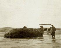 Image of The Oyster Rock, Wellfleet