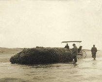 Image of The Oyster Rock, Wellfleet - W0080