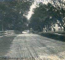Image of Street North Wellfleet 1899 - W1223