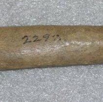 Image of 1926.001.00456 - Scraper, Hide