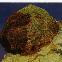 Image of 1979.009.00394 - Postcard