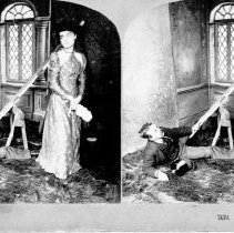 Image of 1994.023.00021 - Stereograph