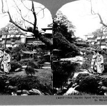 Image of 1995.010.00616 - Stereograph
