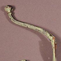 Image of 1975.026.014 - Hook, Coat