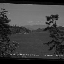 Image of 4122 - Negative, Sheet Film