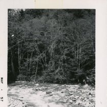 Image of 4903 - Photograph