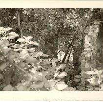 Image of 1984.54.22 - Print, Photographic