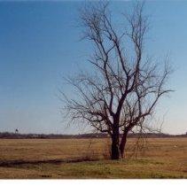Image of 2002.11.19 - Print, Photographic