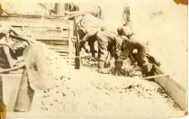 Image of postcard - Photo depicts oystermen sorting through pile of oysters on a scow.  No information or dates of reverse of card.