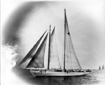 """Image of Print, Photographic - b & w photograph thought to be of 1929 Schooner Race on Delaware Bay.   Vessel is #4, the oyster schooner ETHEL V STOWMAN according to the """"Entries of Racing Boats"""" printed in the 1929 program for the race."""