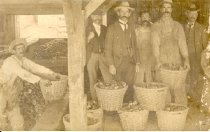 Image of Postcard - Oystermen standing in front of loaded oyster baskets.  Worker shown lifting basket from scow onto the dock.  Some men are in business suits.  Reverse of card inscription in handwritten black ink:  Left to Right - James Gibson, P. Norris; Wm Peace, P. Norris; Mort Cosier, Newport; James Compton, P. Norris; Chas. Pettit, Bivalve; Peter C. Cosier, Newport.  Top righthand corner in pencil:  From Mr. Lambert - 8/22/40