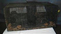 Image of 2003.01.253 - Eel pot