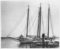 Image of Print, Photographic - B & w photo of the schooners C & B CAMPBELL AND ANNA M ROBBINS rafted together at end of wharf