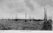 """Image of Postcard - B & W image of view across water shows a number of boats at anchor and many more near shoreline. Printed caption at bottom of original photo reads """" No. 1043. In the Harbor - Bivalve, N.J. """" Hand written on reverse side is """"Mr Richard book"""""""