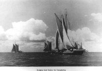 """Image of Print, Photograph - Scanned/digital copy. Steelman Photo Vintage Photo File (8560825-1662 FILE #2020. 8"""" x 12"""" black and white photo of four schooners dredging oysters on the Delaware Bay out of Port Norris, N.J."""
