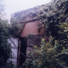 Image of 0123-045_05-16-004 - Overgrown Exterior of the Roundhouse