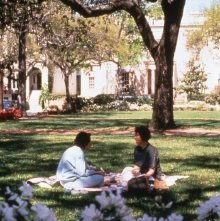 Image of 0123-045_09-02-339 - Couple Picnicking in Unknown Park.
